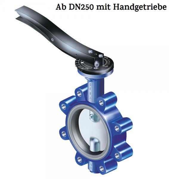 GESA-NBR-DN250-PN16