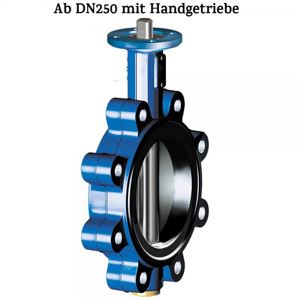 ZIVA-G-NBR-DN250
